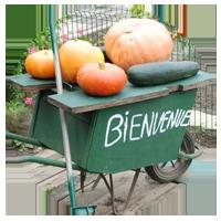 Bienvenue au jardin - Jardins Solidaires et Citoyens