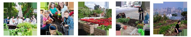 Différents jardins urbains