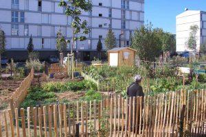 Jardin en pied d'immeuble